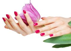 Beauty Treatments. manicure red flower